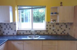 Kitchen backsplash1572